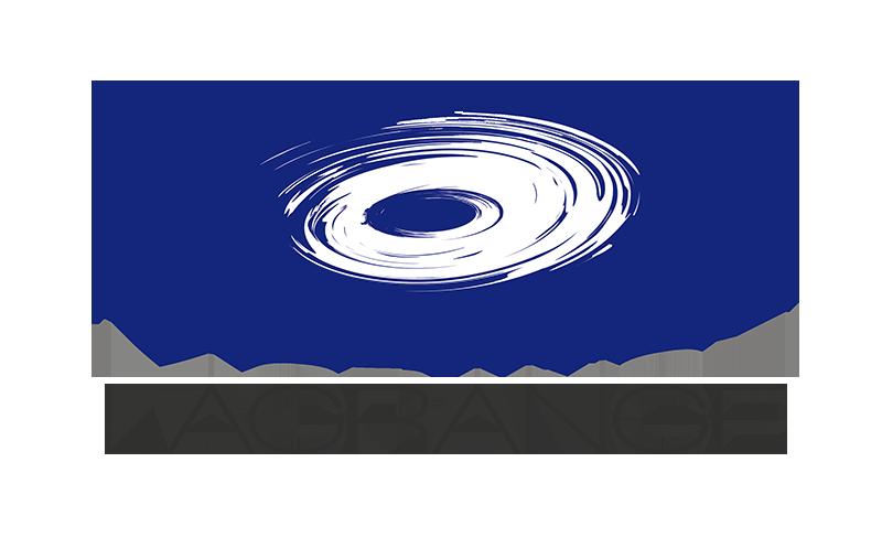 UMR Lagrange